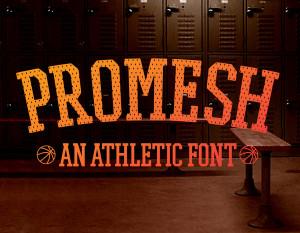 pro-mesh-font-v1-sdco