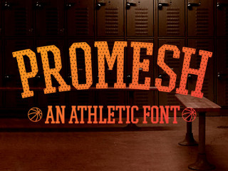 ProMesh Sports Font from Paul Reis